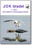 JOK-Bladet_2017-3