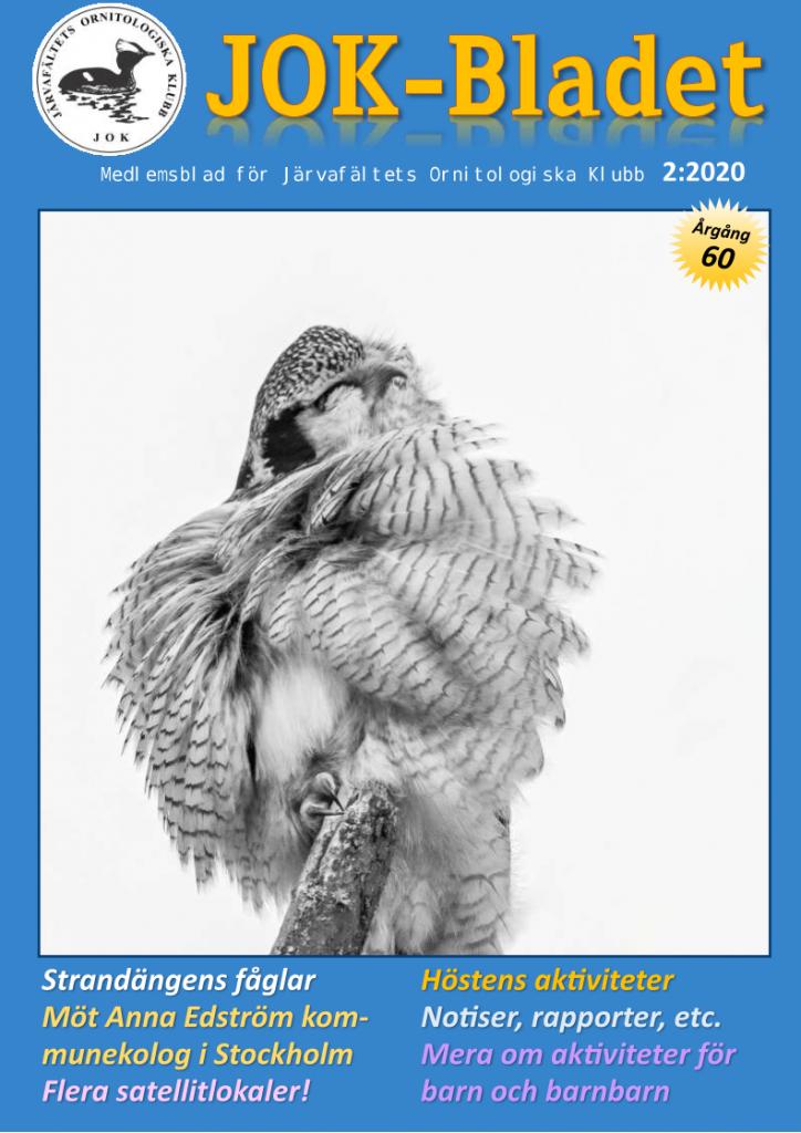 JOK-Bladet_2020-2