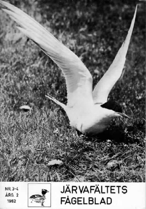 Järvafältets Fågelblad 1962